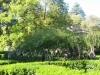 Путешествие в Грузию 06-14 октября 2012 года (рис.501)