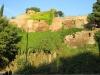 Путешествие в Грузию 06-14 октября 2012 года (рис.49)