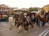 Путешествие в Грузию 06-14 октября 2012 года (рис.65)