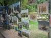 Путешествие в Грузию 06-14 октября 2012 года (рис.369)