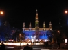 Путешествие в Вену с посещением Венских балов 18-22.02.2012 (рис.14)